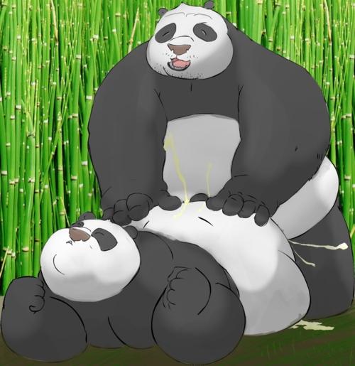 kung sex fu tigress panda Sonic the hedgehog amy naked