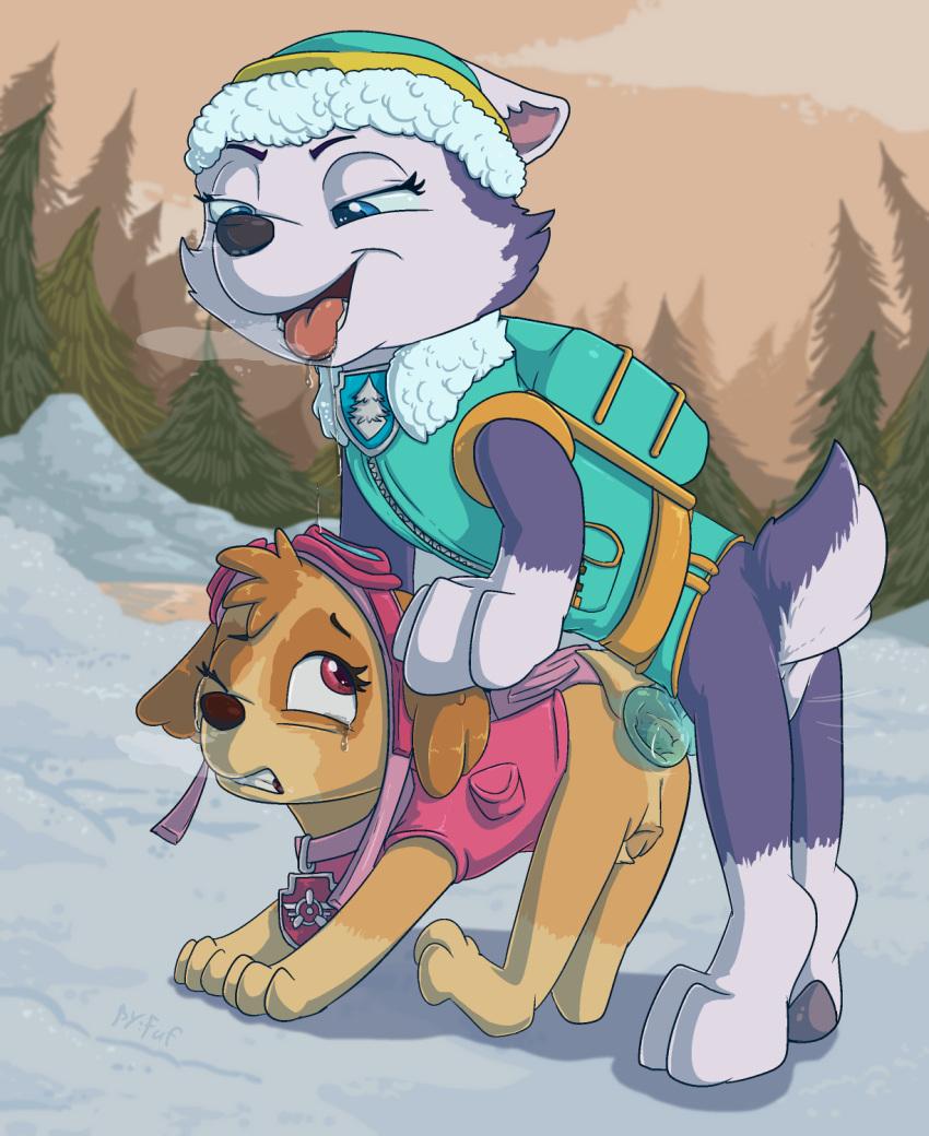 tundra patrol paw rocky and Buta_no_gotoki